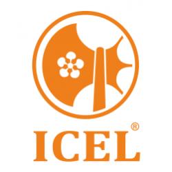 Фирма Icel